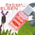 ELSEN Refresh Hand Sanitizer 2 Oz.
